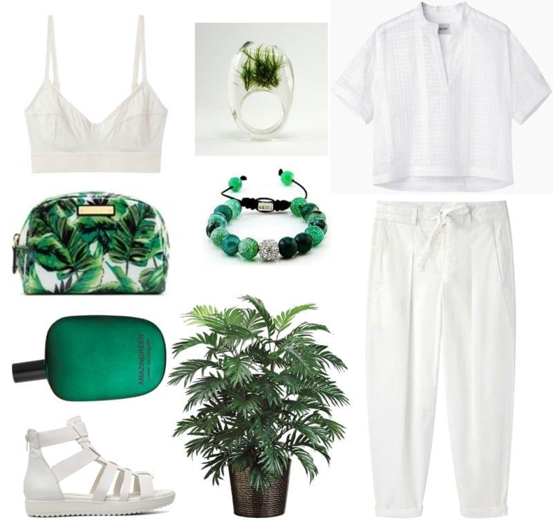 biel minimalizm rośliny